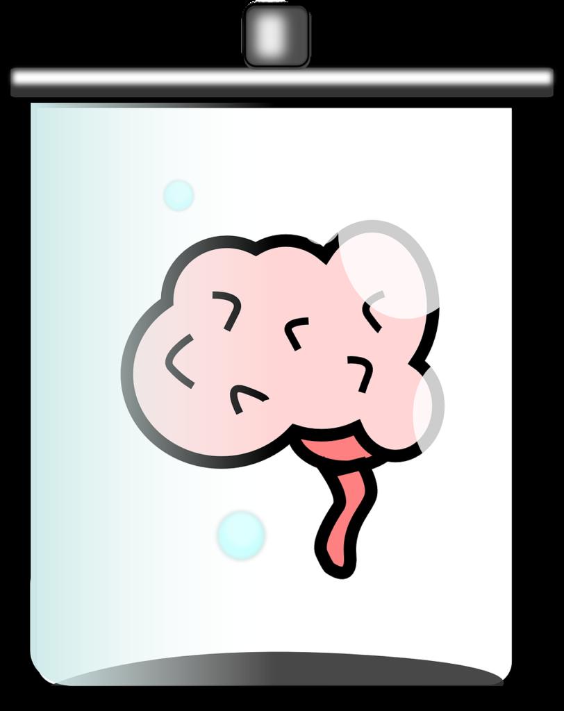 Cerveau dans un bocal